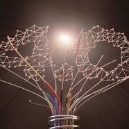 Helping STEMM Leaders Flourish