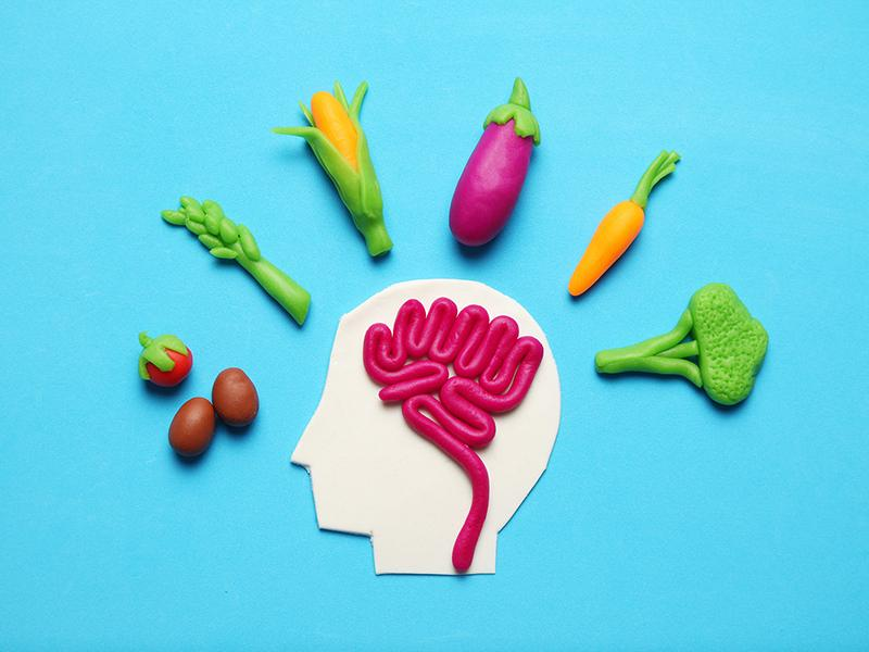 Plasticine figure of man and vegetarian food. Food for mind, charge of energy. Healthy lifestyle, detoxification and antioxidants.