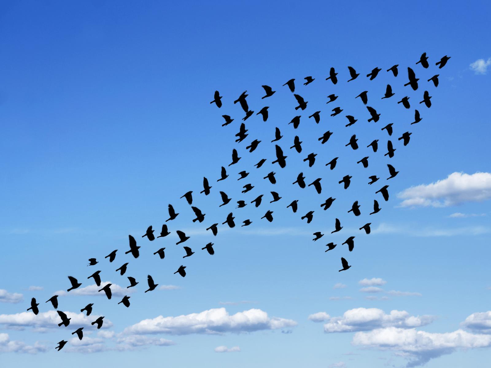 Mindfulness links to transformational leadership