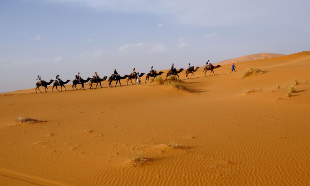 There is a blue sky and yellow sandy desert, with the picture taken at an angle. A man wearing a blue shirt and red hat is leading nine camels. Each camel is being ridden by a rider, with the fifth rider being accompanied by a person on foot.