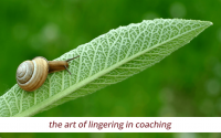 The art of lingering in coaching - IOC Research Dose