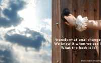 What the Heck is Transformational Change Visual Tour